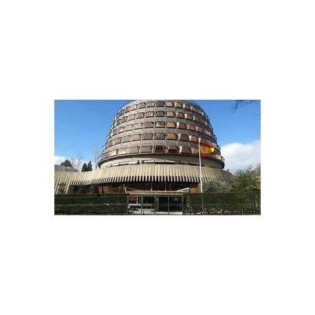 Seminario práctico de jurisprudencia constitucional comparada e internacional